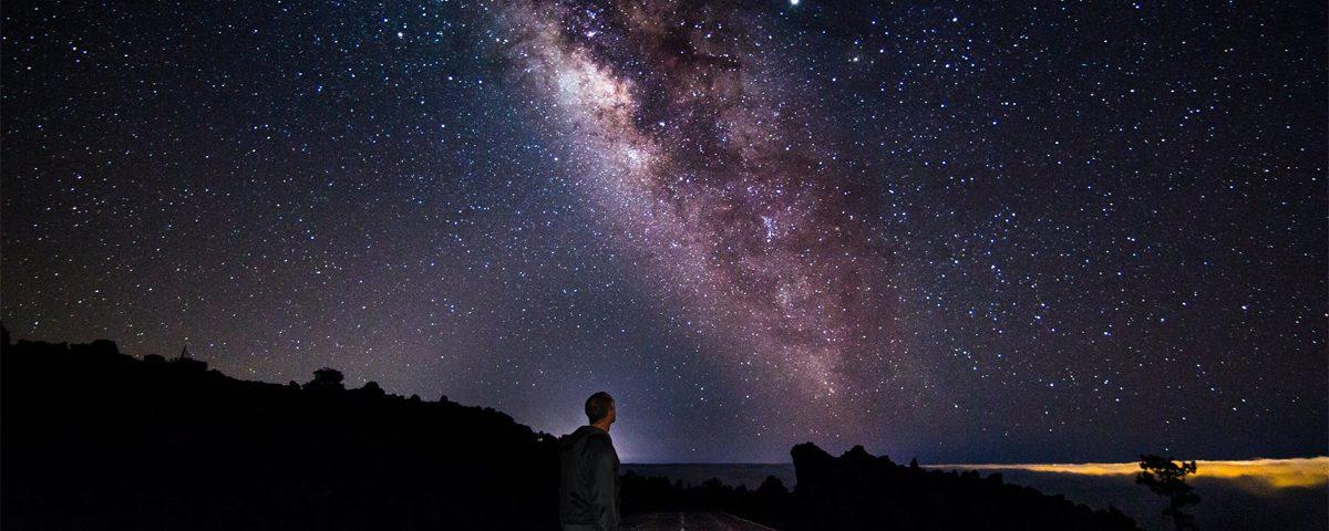El propósito del universo